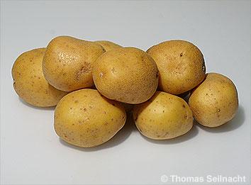 Eiweißgehalt Kartoffeln