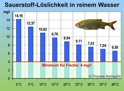 Abiotischer Faktor Wasser